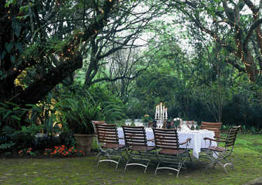 Dining under the trees at Cybele Forest Lodge