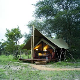 Plains Camp tented accommodation