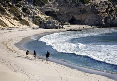 Horseriding on the beach near Grootbos Nature Reserve